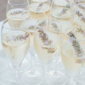 Champagne and Lavender